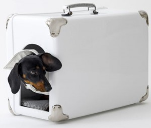 дизайнерский домик для собаки